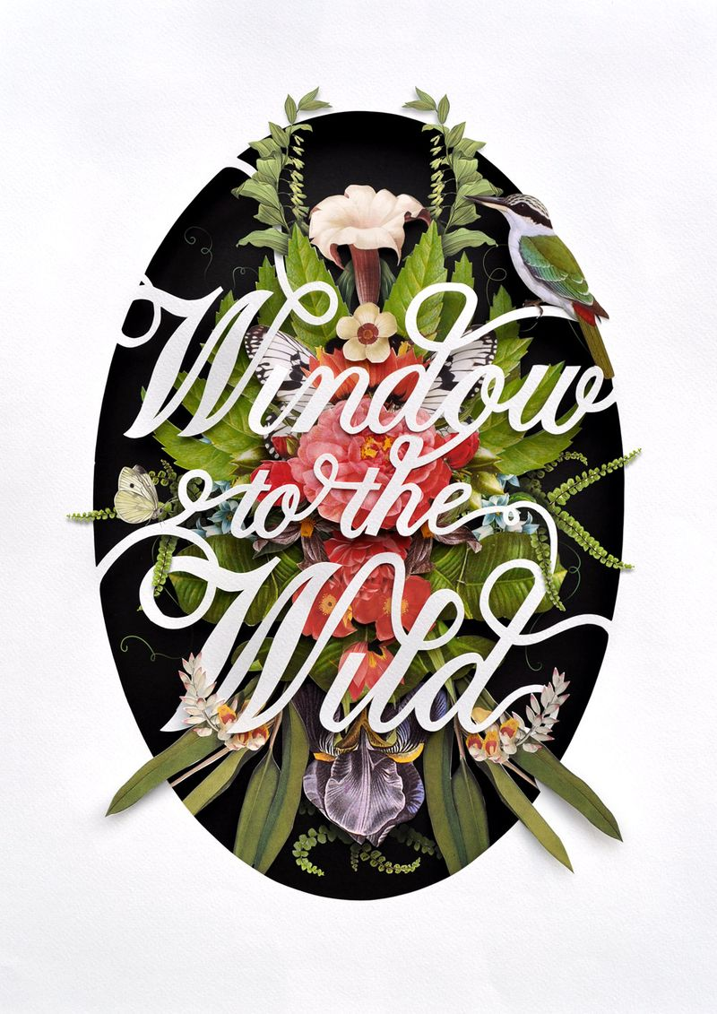 Windowtothewild_web