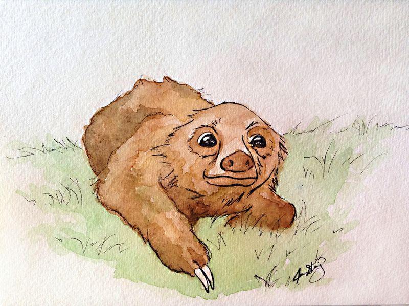 Jstenning_baby_sloth